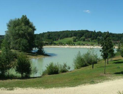 Le parc de Pombonne
